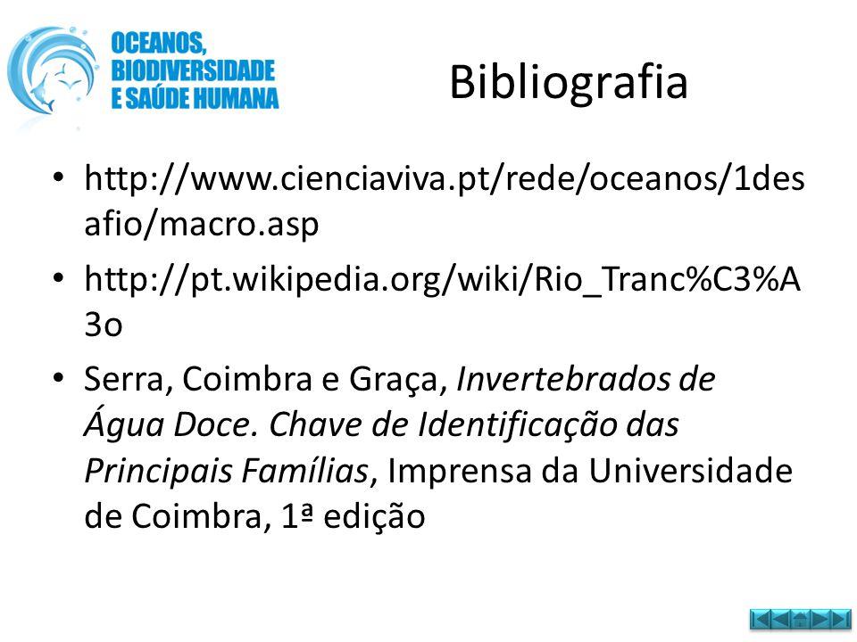 Bibliografia http://www.cienciaviva.pt/rede/oceanos/1desafio/macro.asp
