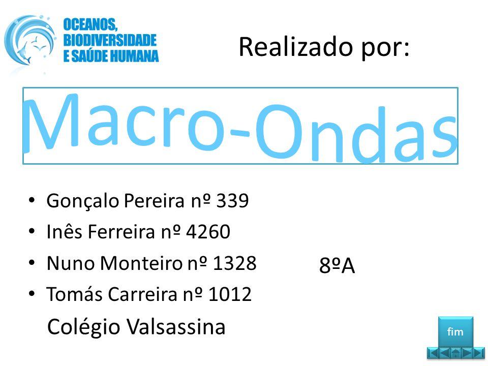 Macro-Ondas Realizado por: 8ºA Colégio Valsassina