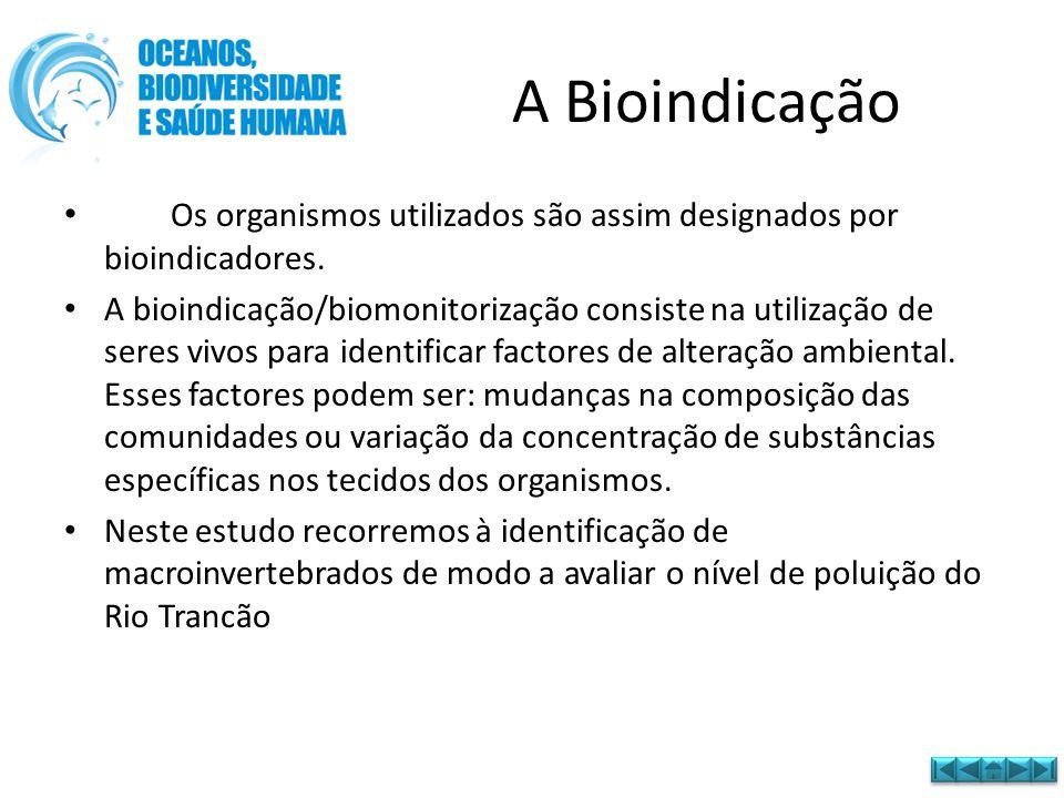A Bioindicação Os organismos utilizados são assim designados por bioindicadores.