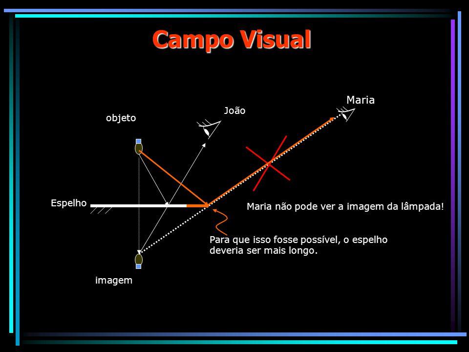 Campo Visual Maria João objeto Espelho