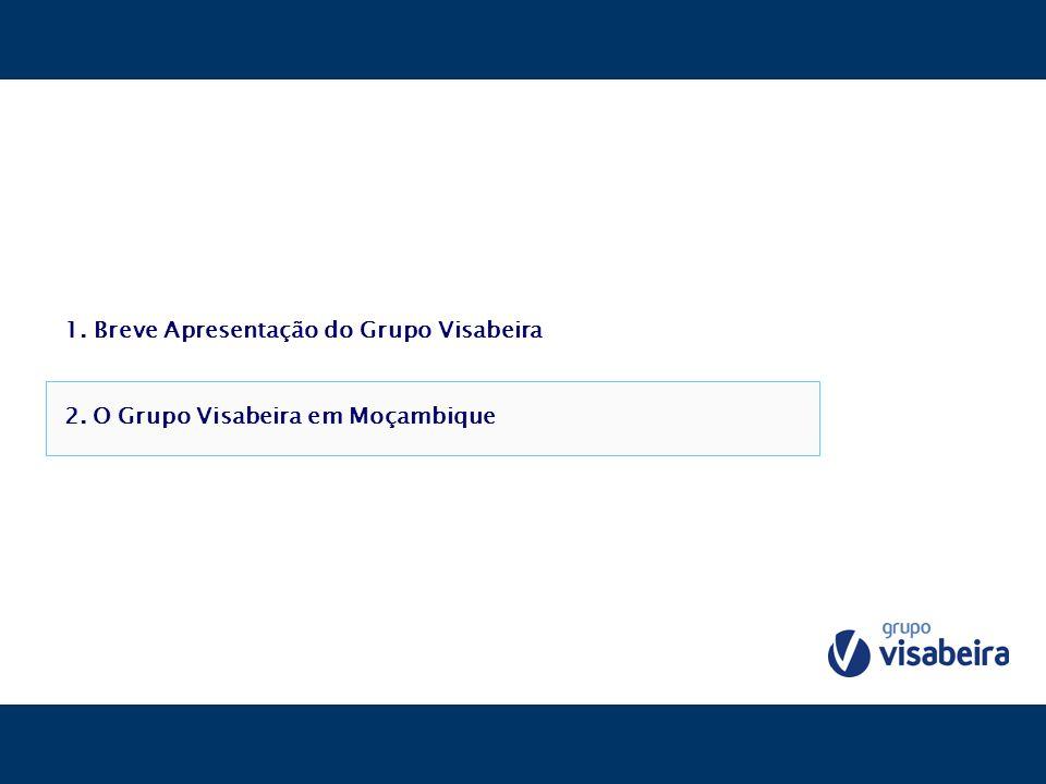 1. Breve Apresentação do Grupo Visabeira