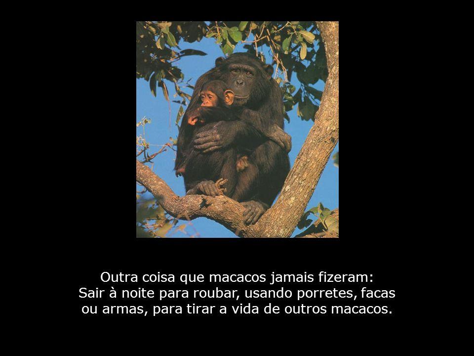 Outra coisa que macacos jamais fizeram: