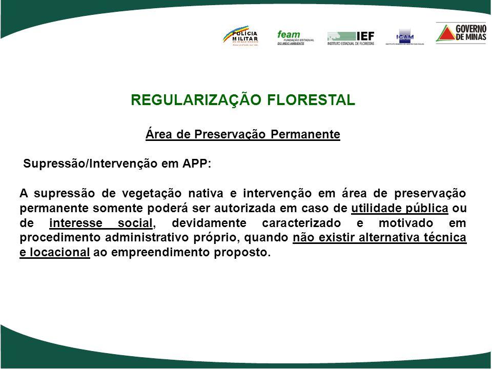 REGULARIZAÇÃO FLORESTAL Área de Preservação Permanente