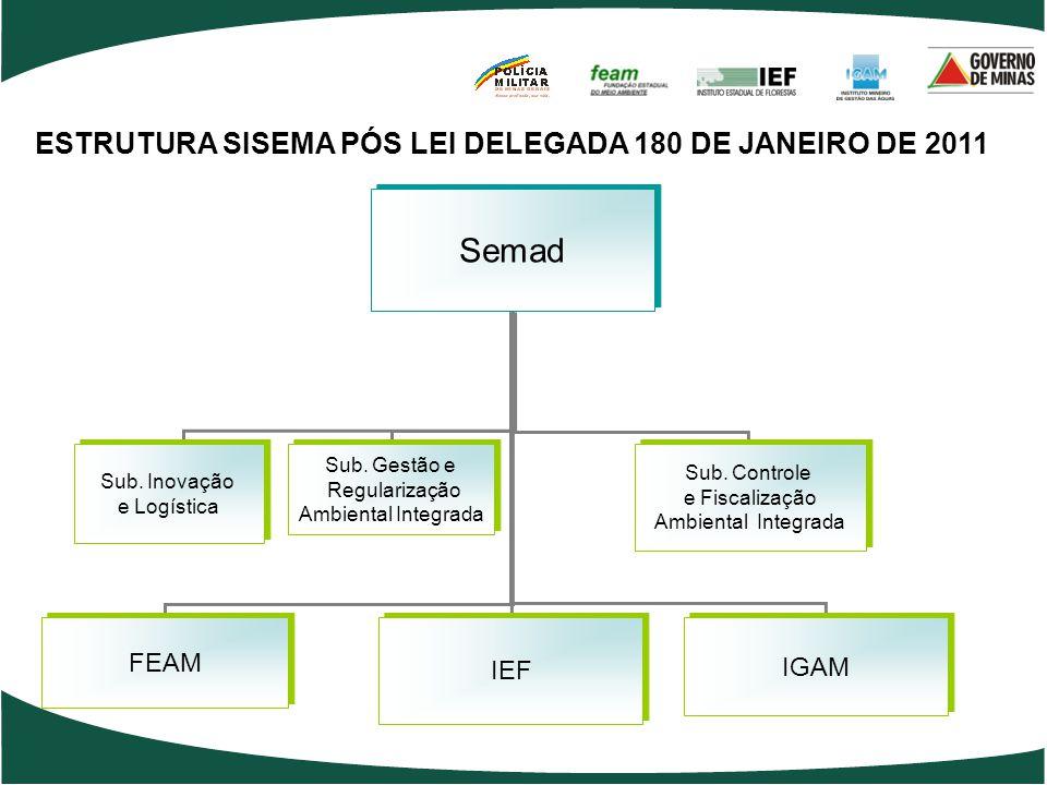 ESTRUTURA SISEMA PÓS LEI DELEGADA 180 DE JANEIRO DE 2011