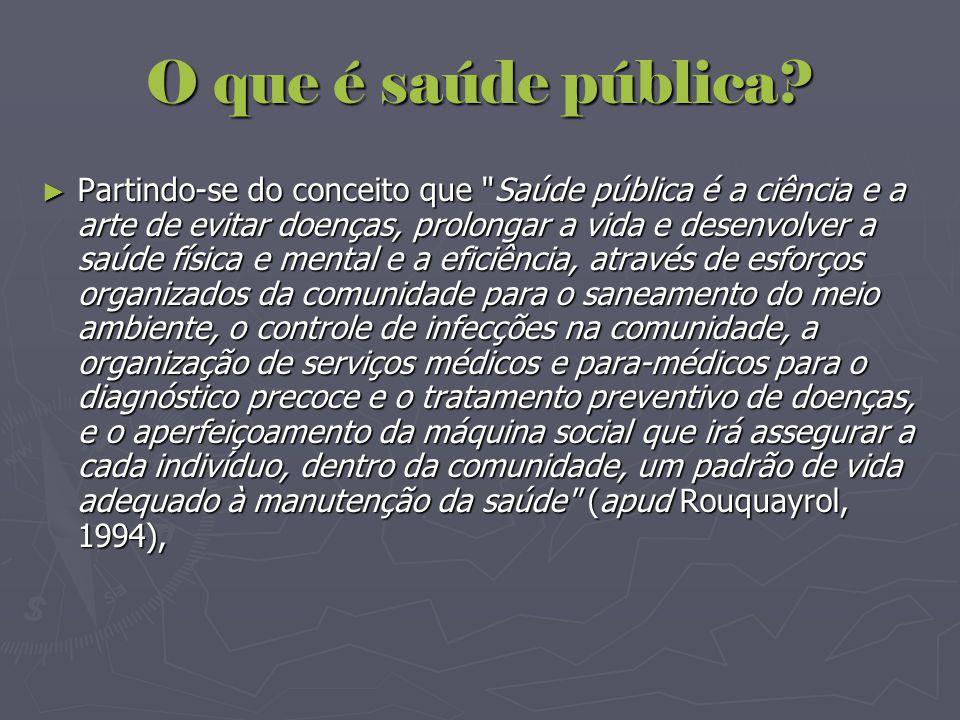 O que é saúde pública