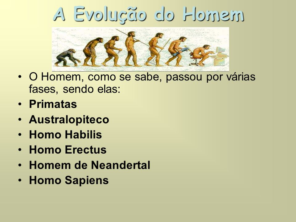 A Evolução do Homem O Homem, como se sabe, passou por várias fases, sendo elas: Primatas. Australopiteco.