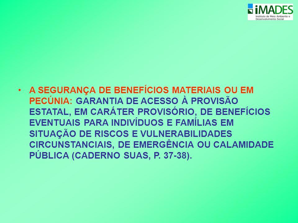 A SEGURANÇA DE BENEFÍCIOS MATERIAIS OU EM PECÚNIA: GARANTIA DE ACESSO À PROVISÃO ESTATAL, EM CARÁTER PROVISÓRIO, DE BENEFÍCIOS EVENTUAIS PARA INDIVÍDUOS E FAMÍLIAS EM SITUAÇÃO DE RISCOS E VULNERABILIDADES CIRCUNSTANCIAIS, DE EMERGÊNCIA OU CALAMIDADE PÚBLICA (CADERNO SUAS, P.