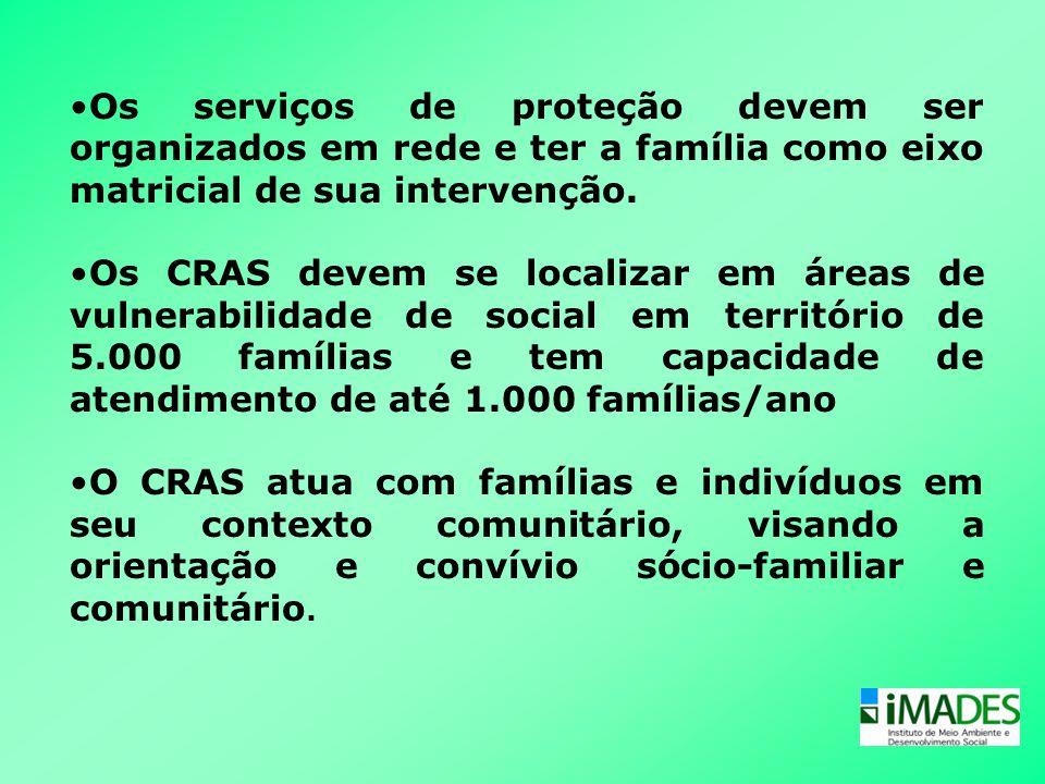 Os serviços de proteção devem ser organizados em rede e ter a família como eixo matricial de sua intervenção.