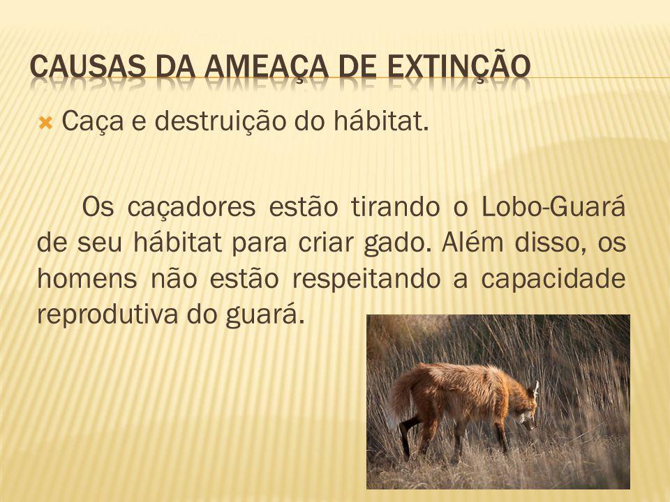 Causas da ameaça de extinção