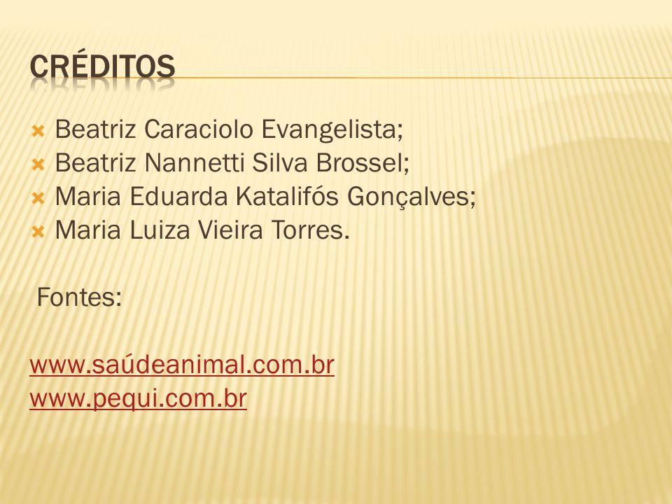 Créditos Beatriz Caraciolo Evangelista;
