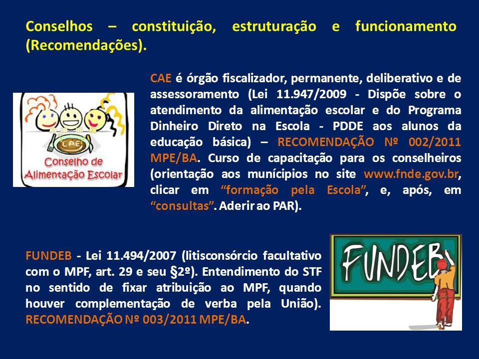 Conselhos – constituição, estruturação e funcionamento (Recomendações).