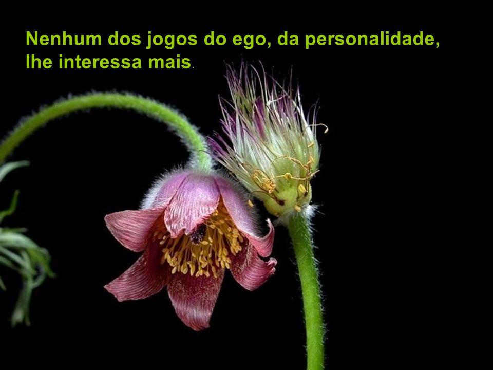 Nenhum dos jogos do ego, da personalidade, lhe interessa mais.