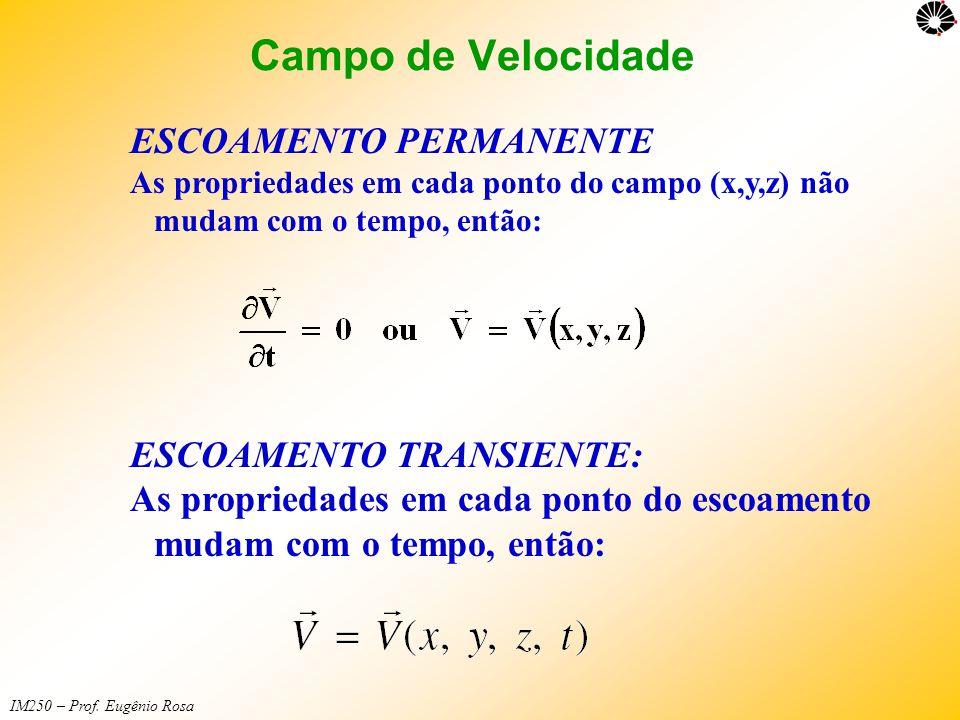 Campo de Velocidade ESCOAMENTO PERMANENTE ESCOAMENTO TRANSIENTE: