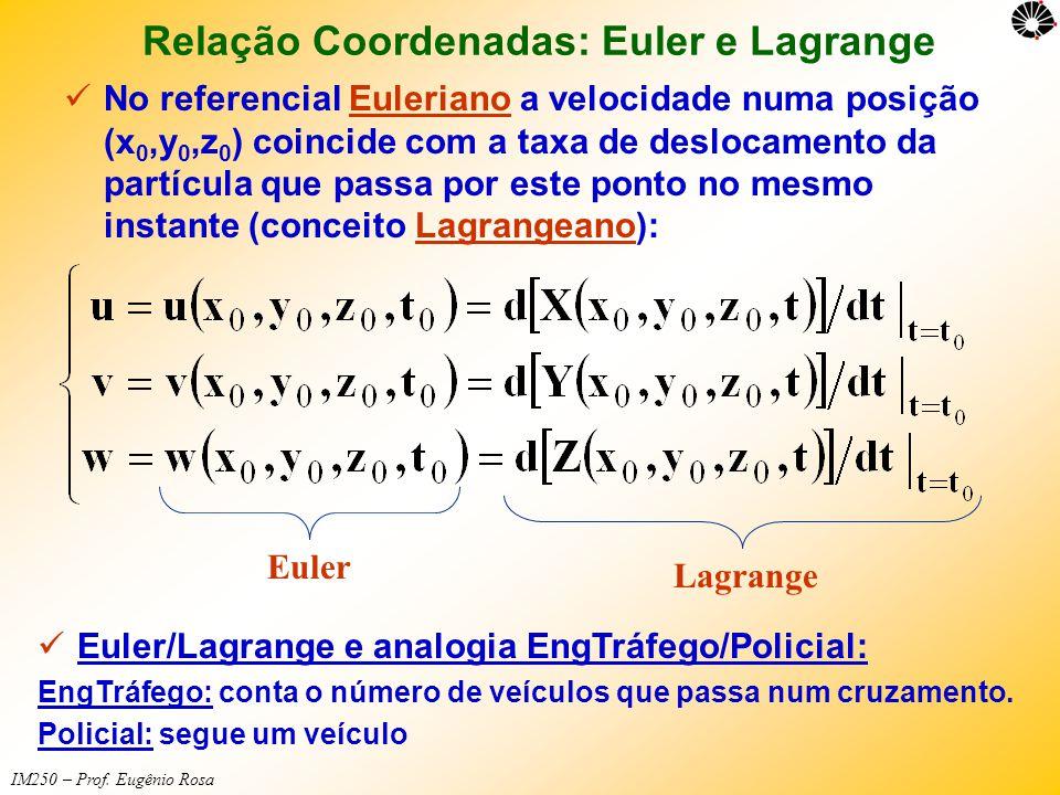 Relação Coordenadas: Euler e Lagrange