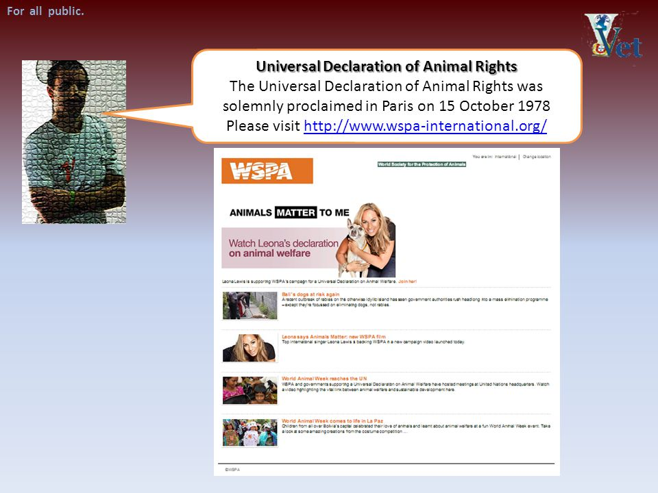 Universal Declaration of Animal Rights