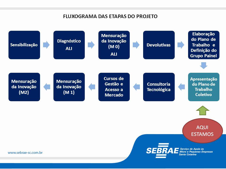 FLUXOGRAMA DAS ETAPAS DO PROJETO
