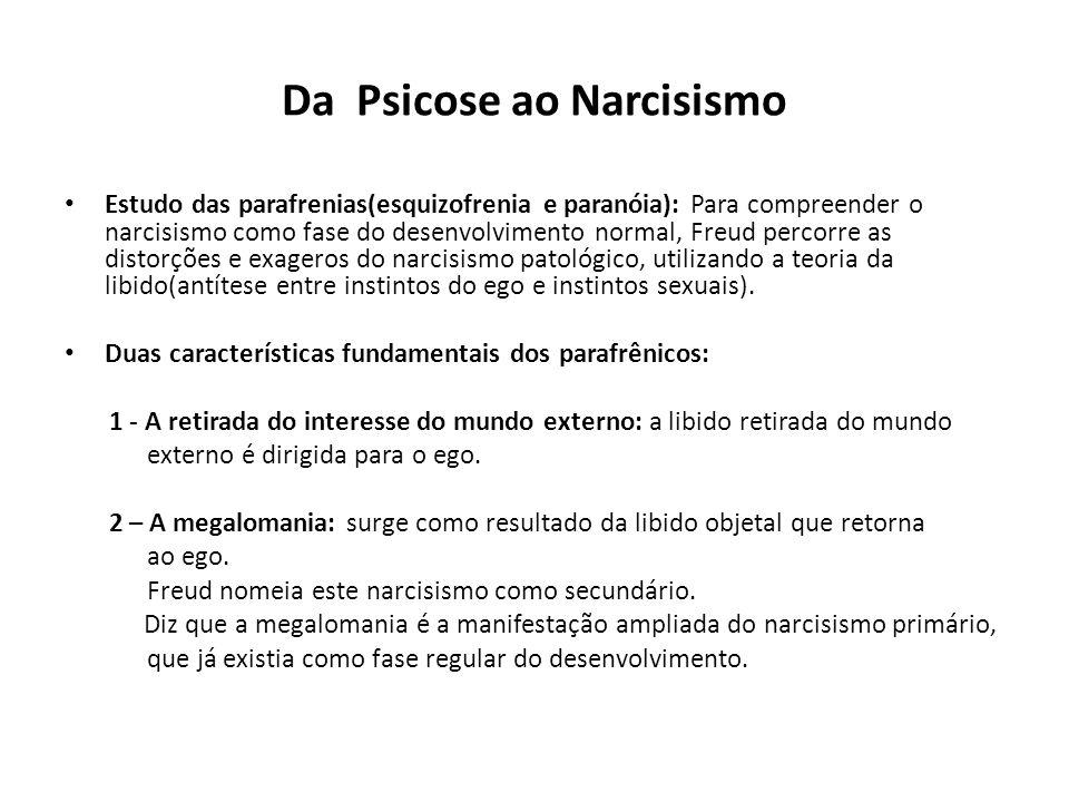 Da Psicose ao Narcisismo
