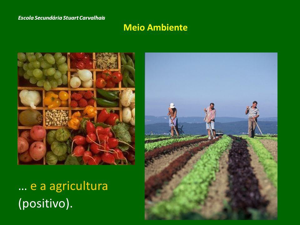 … e a agricultura (positivo).