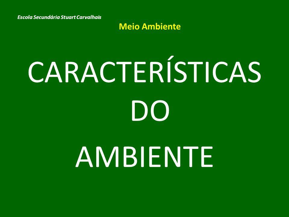 CARACTERÍSTICAS DO AMBIENTE