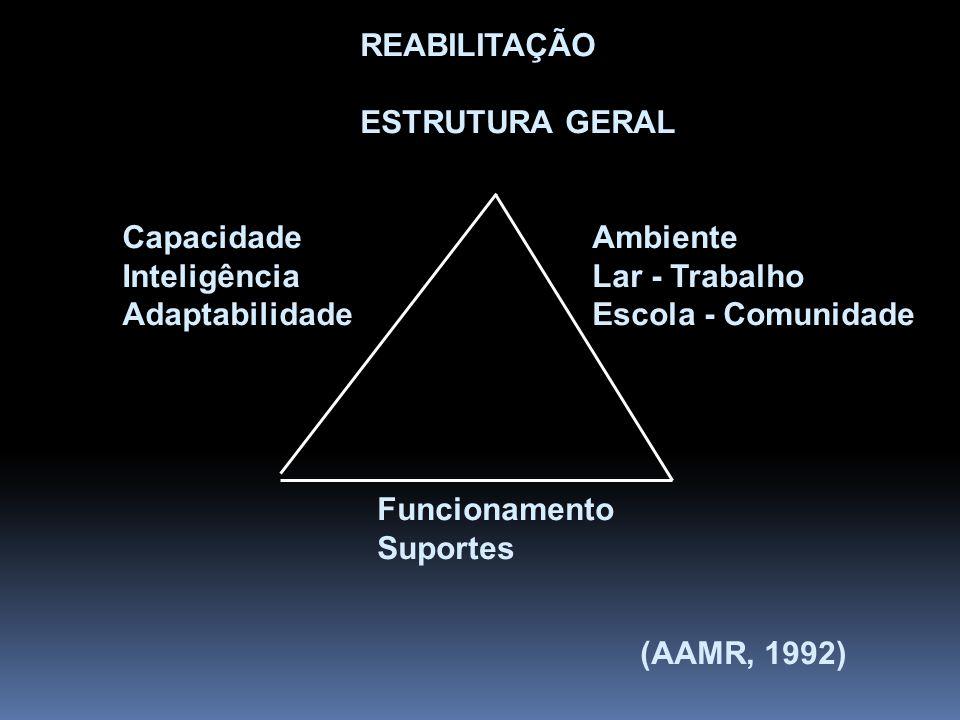 REABILITAÇÃO ESTRUTURA GERAL. Capacidade. Inteligência. Adaptabilidade. Ambiente. Lar - Trabalho.