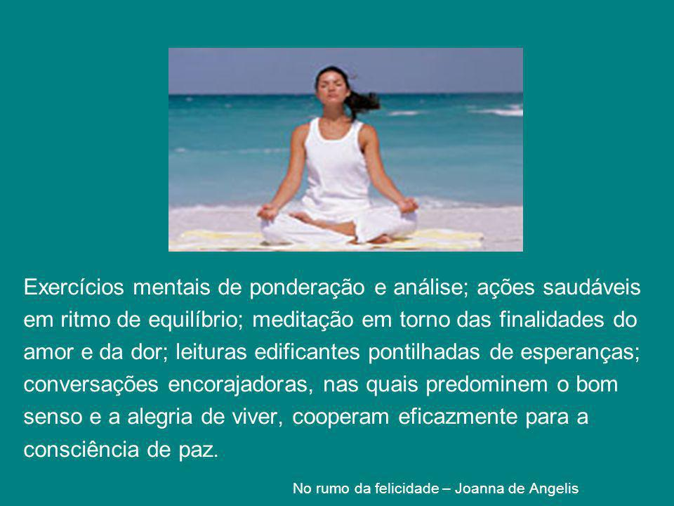 No rumo da felicidade – Joanna de Angelis