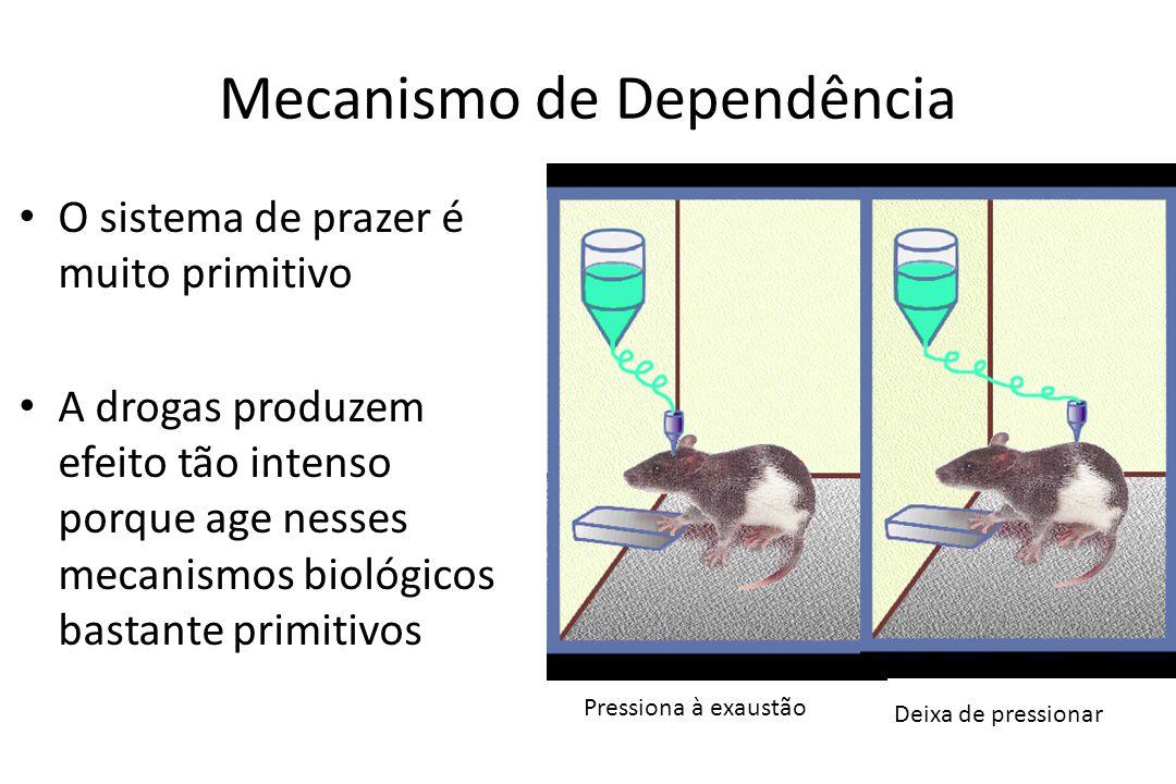 Mecanismo de Dependência