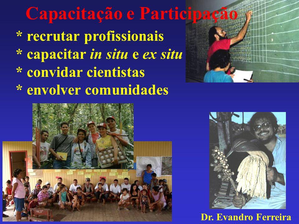 Capacitação e Participação