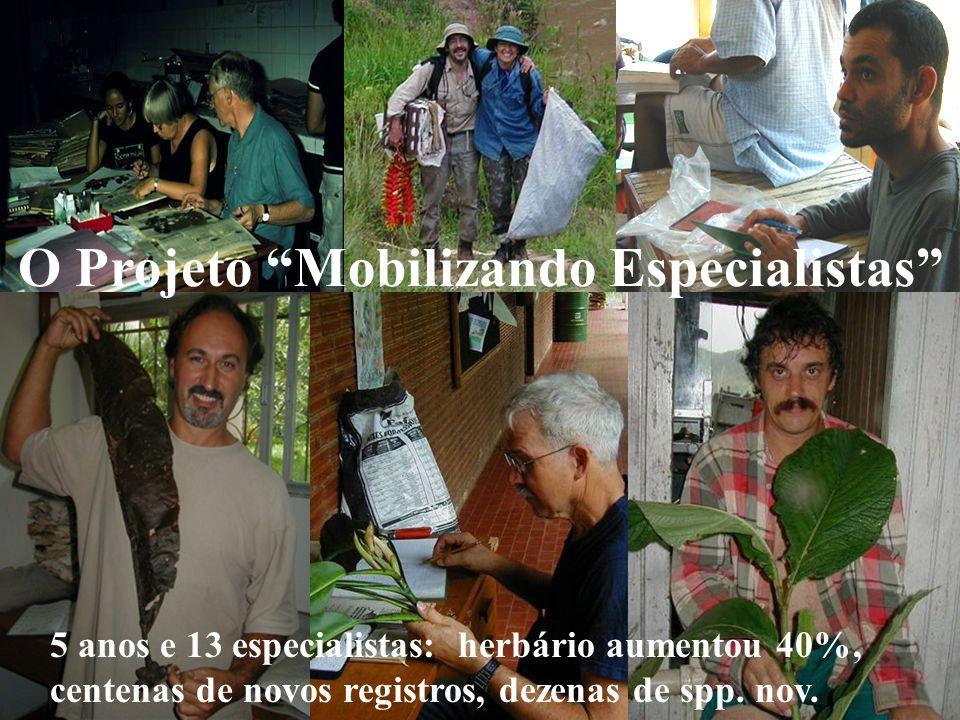 O Projeto Mobilizando Especialistas