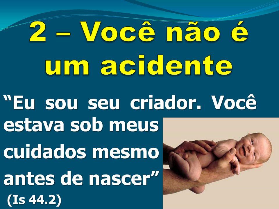 2 – Você não é um acidente Eu sou seu criador. Você estava sob meus