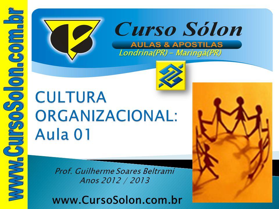 CULTURA ORGANIZACIONAL: Aula 01
