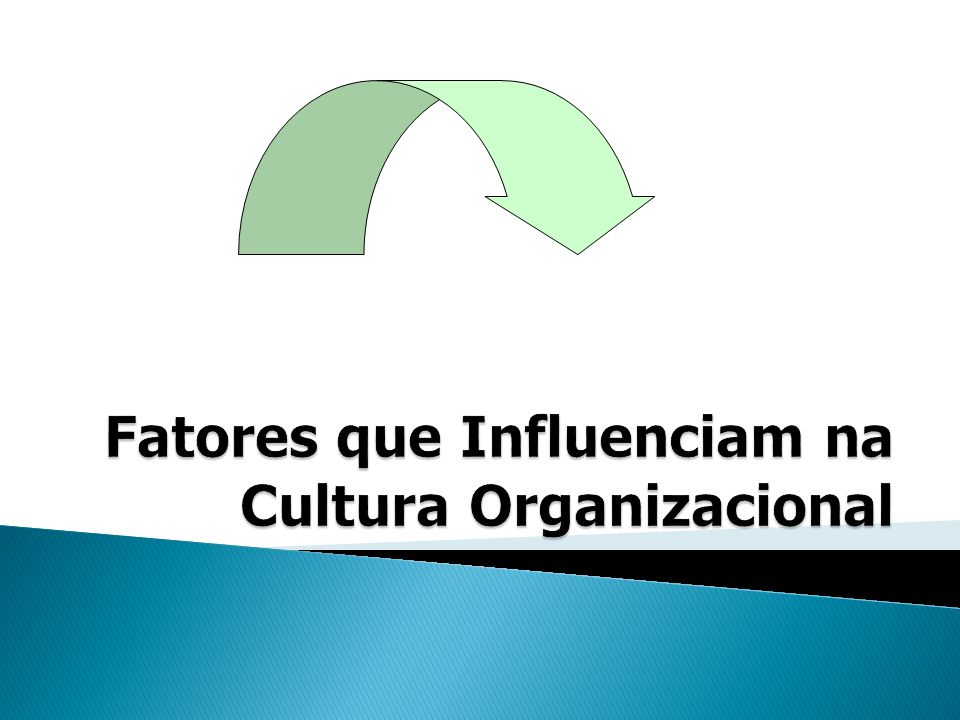 Fatores que Influenciam na Cultura Organizacional