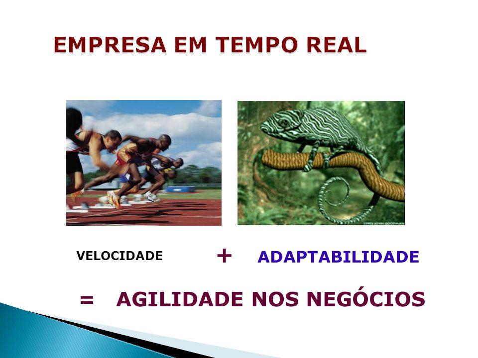 EMPRESA EM TEMPO REAL = AGILIDADE NOS NEGÓCIOS + ADAPTABILIDADE