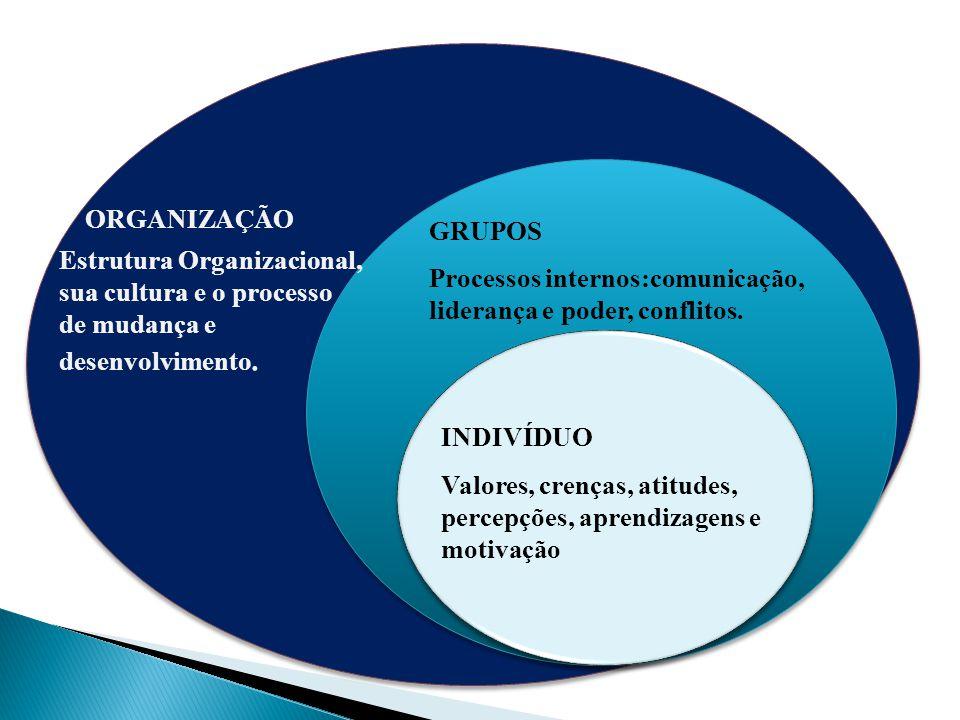 ORGANIZAÇÃO GRUPOS. Estrutura Organizacional, sua cultura e o processo de mudança e desenvolvimento.