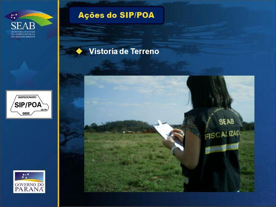 Ações do SIP/POA Vistoria de Terreno