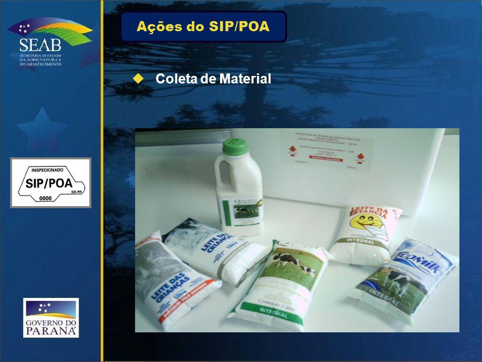 Ações do SIP/POA Coleta de Material