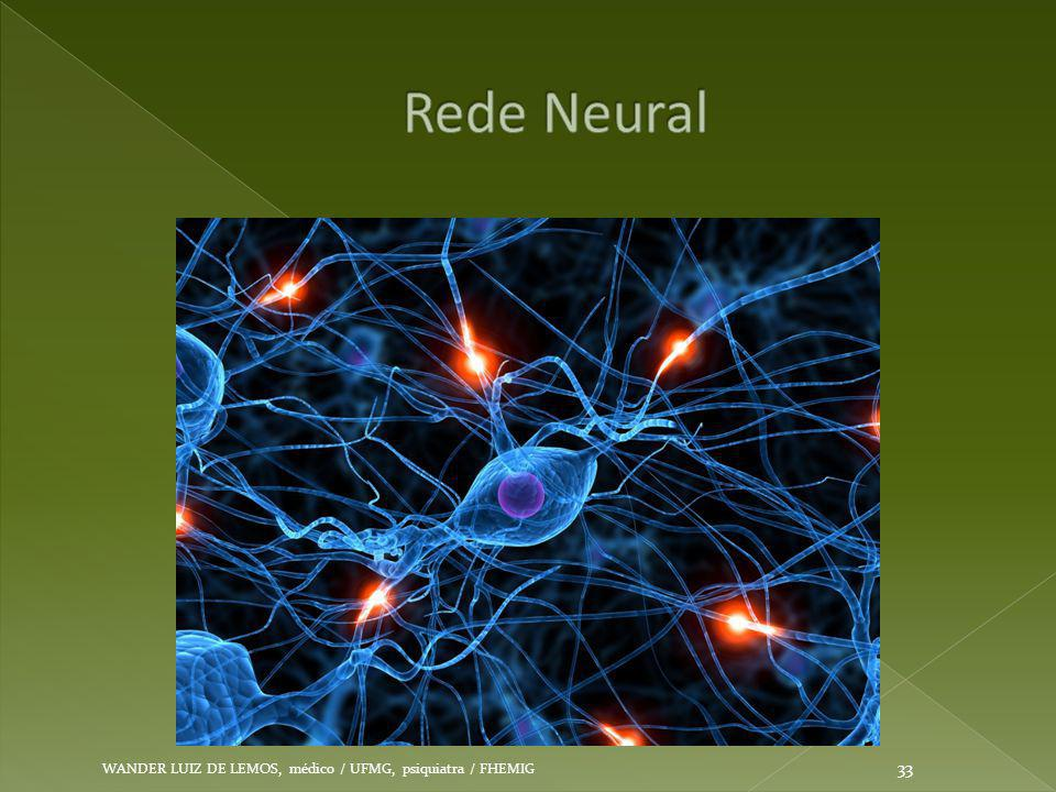 Rede Neural WANDER LUIZ DE LEMOS, médico / UFMG, psiquiatra / FHEMIG