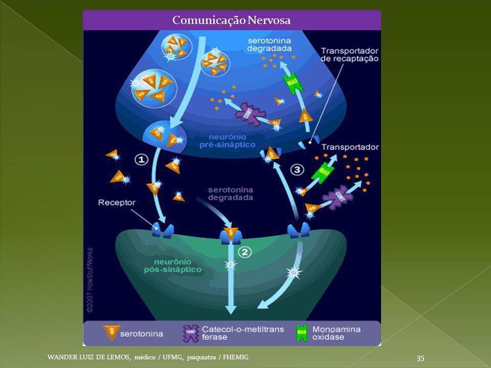 Comunicação Nervosa WANDER LUIZ DE LEMOS, médico / UFMG, psiquiatra / FHEMIG