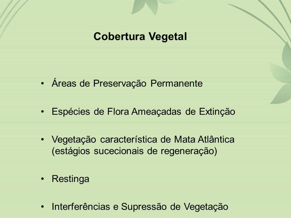 Cobertura Vegetal Áreas de Preservação Permanente