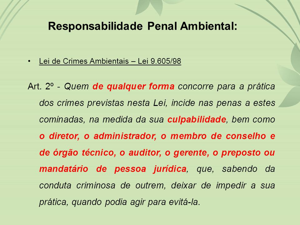 Responsabilidade Penal Ambiental:
