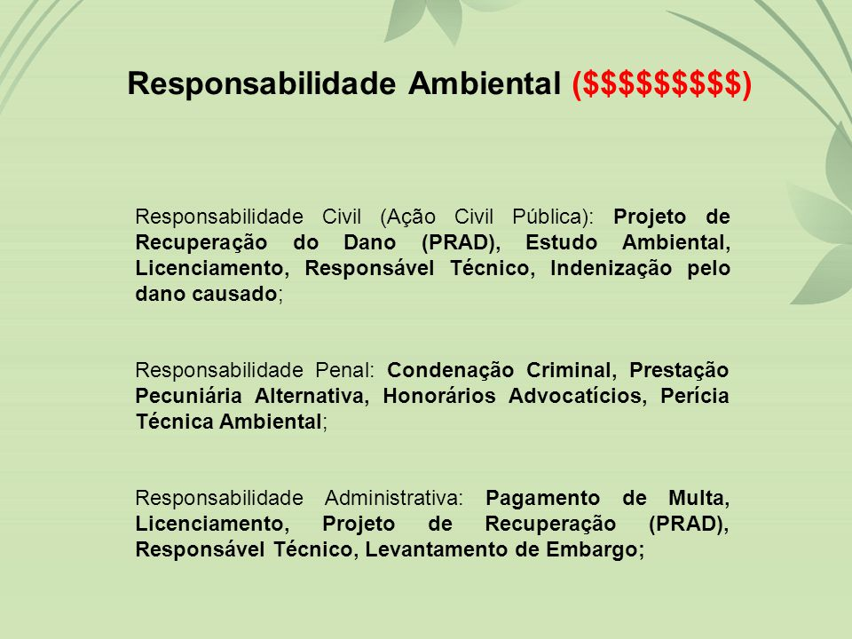 Responsabilidade Ambiental ($$$$$$$$$)