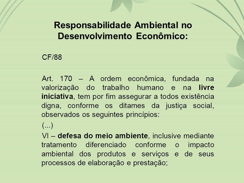 Responsabilidade Ambiental no Desenvolvimento Econômico: