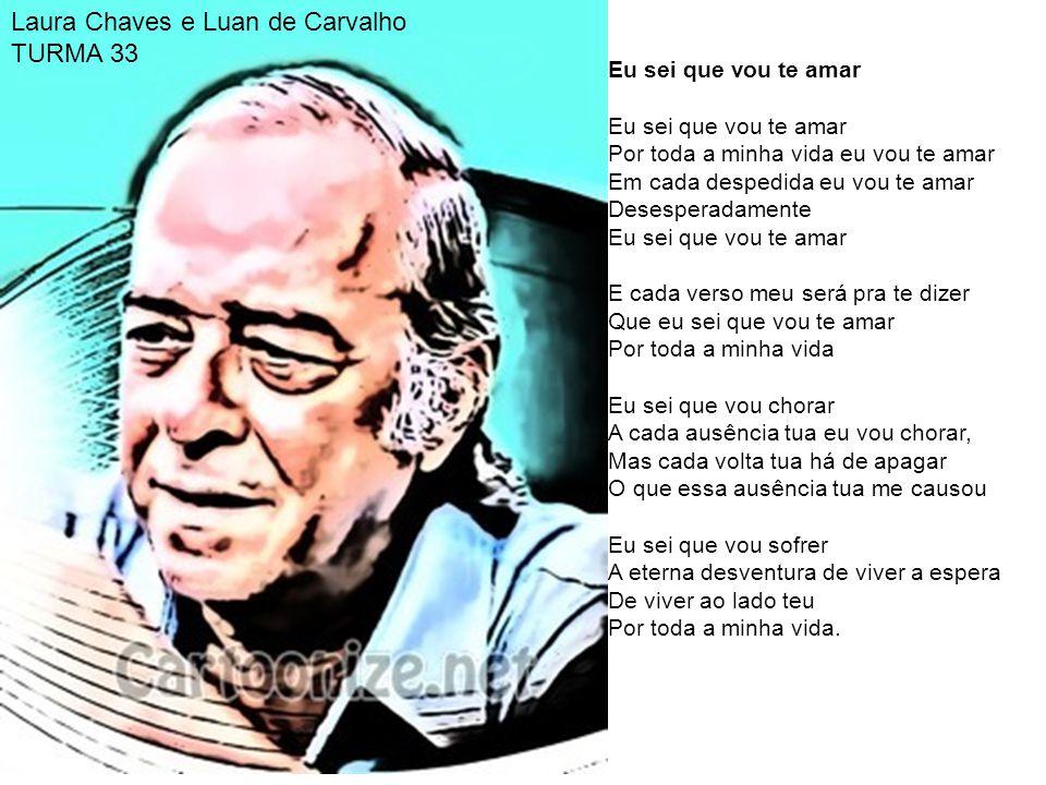 Laura Chaves e Luan de Carvalho TURMA 33