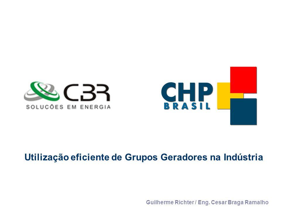 Utilização eficiente de Grupos Geradores na Indústria