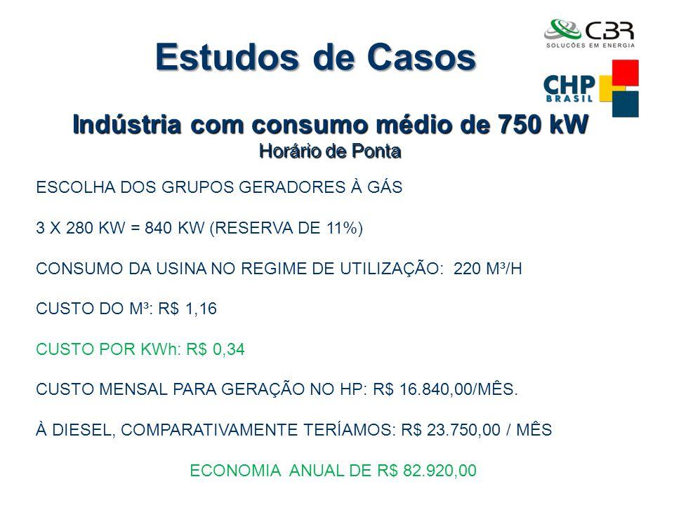 Indústria com consumo médio de 750 kW