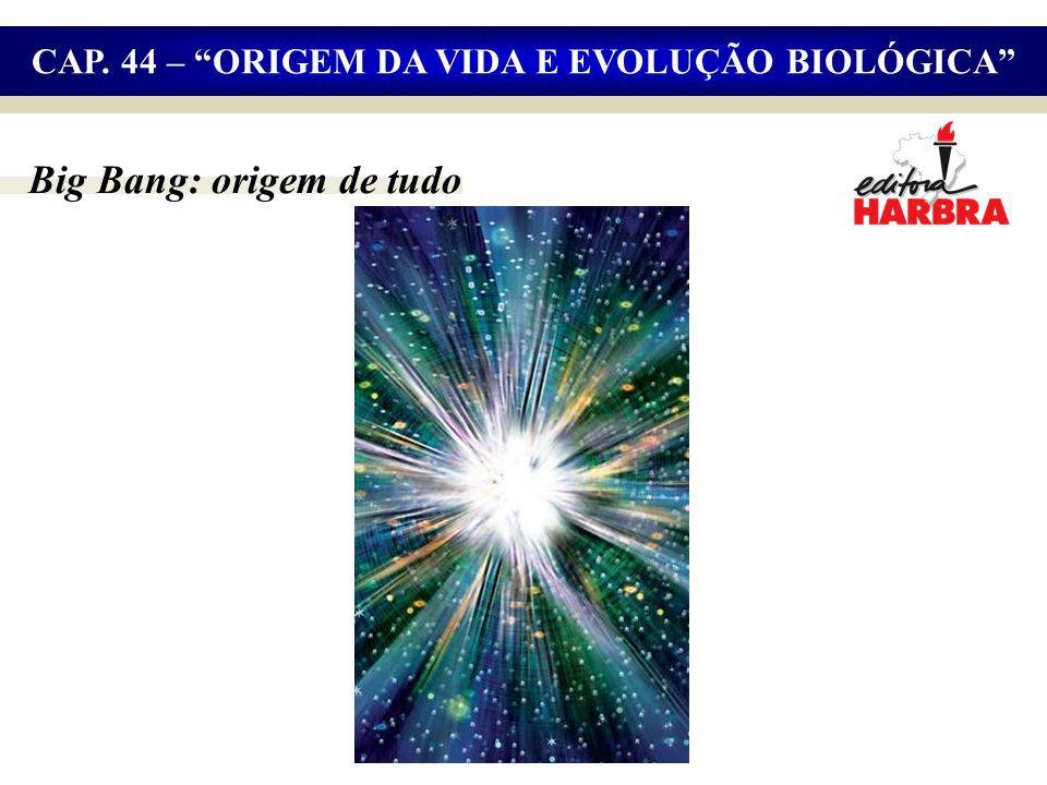 CAP. 44 – ORIGEM DA VIDA E EVOLUÇÃO BIOLÓGICA