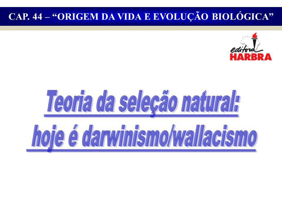 Teoria da seleção natural: hoje é darwinismo/wallacismo