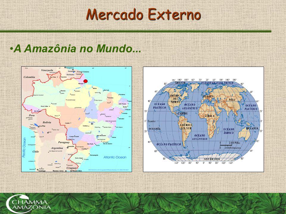 Mercado Externo A Amazônia no Mundo...