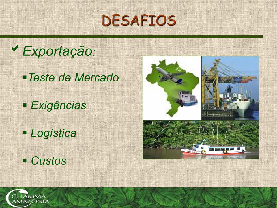 DESAFIOS Exportação: Teste de Mercado Exigências Logística Custos