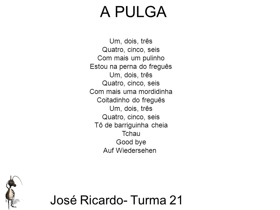 A PULGA José Ricardo- Turma 21