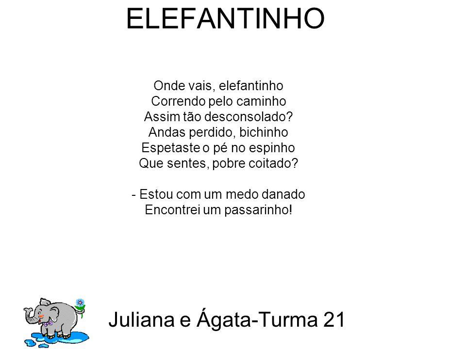 ELEFANTINHO Juliana e Ágata-Turma 21